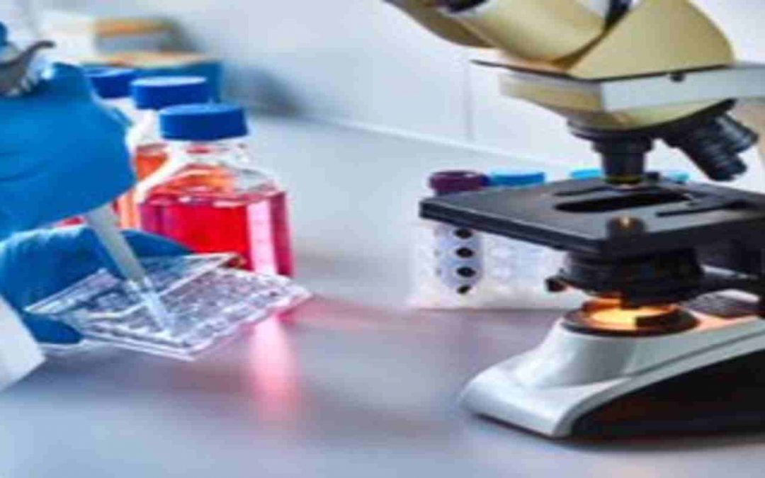 Big Data Analytics and the Future of Biotech Industry