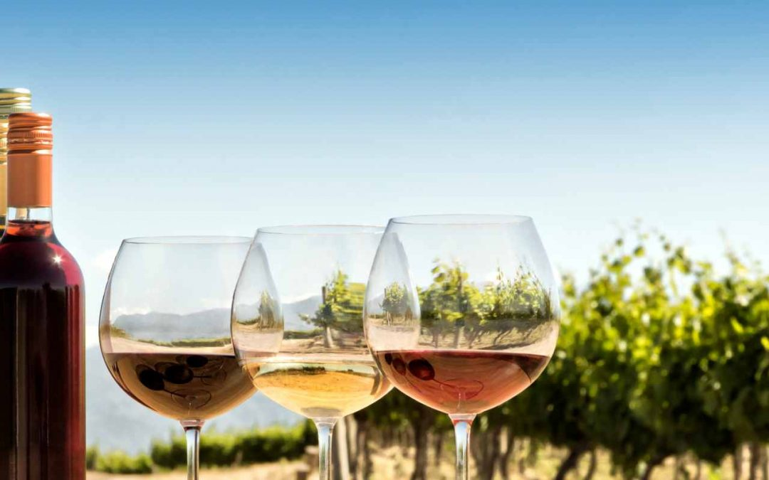 Enhancing Sales Performance with the Help of Pricing Analytics for a Wine and Spirits Manufacturer