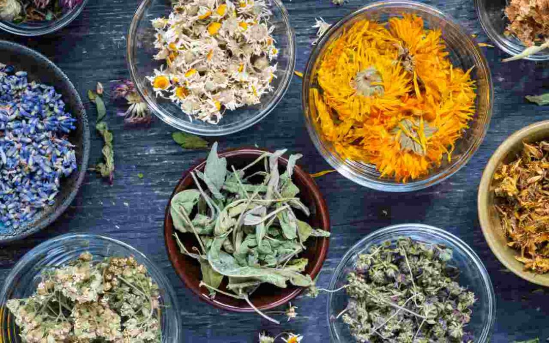 Analyzing the Impact of Trade Promotions for a Leading Dried Herbs and Spices Manufacturer